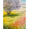 SOMMER – Frühlingswiese Mallorca II